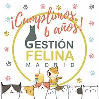 Aniversario GFM